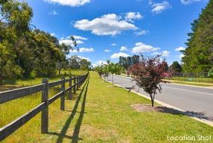 Lot 46 Maxted Street, Renwick, NSW 2575