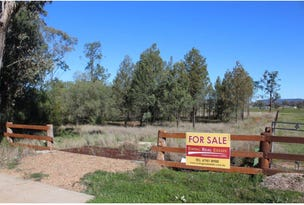 Lot 10, 77 Bushs Lane, Gunnedah, NSW 2380