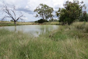 Water + Grass = Cattle, Warialda, NSW 2402