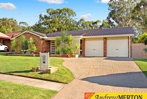 53 Sherridon Crescent, Quakers Hill, NSW 2763