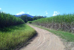 Rae's Road, Abergowrie, Qld 4850