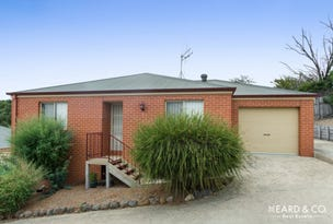 3/45 Church Street, Kangaroo Flat, Vic 3555