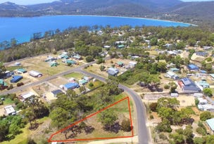 14 Fox Avenue, White Beach, Tas 7184