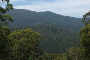 120 Warrigal Range Road, Brogo, NSW 2550