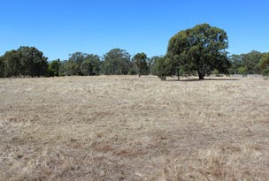 LOT 1 41 McDiarmids Road, Violet Town, Vic 3669