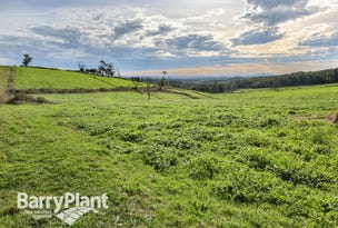 Lot 3 Ure Road, Gembrook, Vic 3783