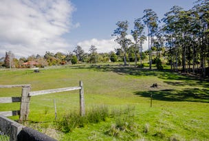 Lot 1B, Kelcey Tier Road, Spreyton, Tas 7310