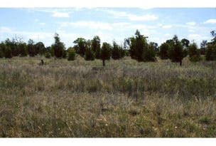 Lot 82C, Bushby Lane, Dimboola, Vic 3414