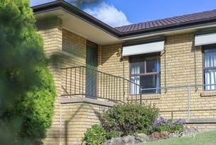 3 Muller Place, Singleton, NSW 2330