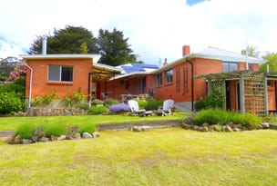 197 Gray Road, St Marys, Tas 7215