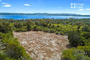 215 Wallaroo Road, Coles Bay, Tas 7215