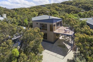 58 Forest Drive, Fairhaven, Vic 3231