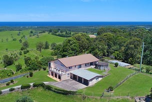 771 Pottsville Road, Cudgera Creek, NSW 2484