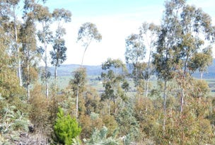 Lot 211 Foggy Forest Rd, Anembo, NSW 2621