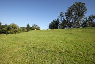 Lot 1, 9 Tulsi Lane, Nimbin, NSW 2480