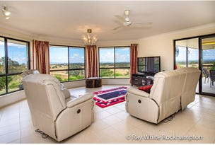 13 Trenwith Terrace, Rockyview, Qld 4701
