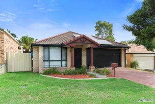 5 Pintail Crescent, Forest Lake, Qld 4078
