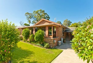 29 Coolabah Road, Medowie, NSW 2318