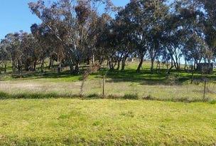 17 Nubrigyn Street, Euchareena, NSW 2866
