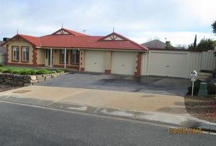 19 Sameden Drive, Noarlunga Downs, SA 5168