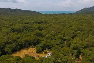 103 Rosewood Road, Cow Bay, Daintree, Qld 4873