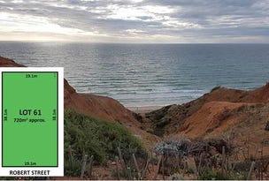9 Robert Street, Sellicks Beach, SA 5174