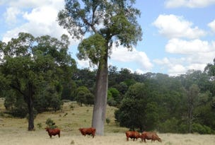 "2427 ACRES ""Carinya"",Gurulmundi Road, Wandoan, Qld 4419"