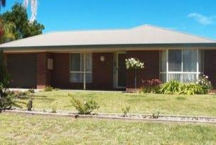 166 Dowling Street, Balranald, NSW 2715