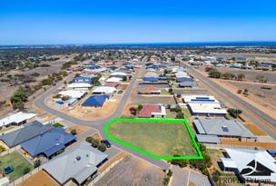 32 Ego Creek Loop, Waggrakine, WA 6530