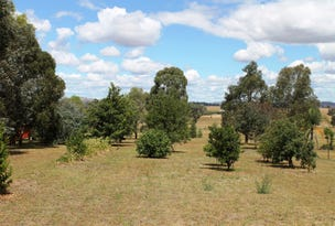 24 Flirtation Hill Lane, Gulgong, NSW 2852