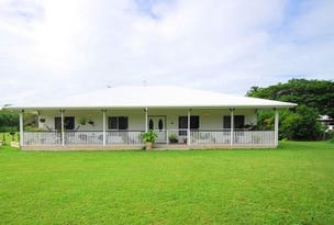 16 Toolakea Beach Road, Bluewater, Qld 4818