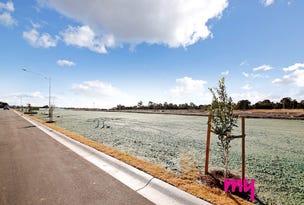 606 Springs Road, Spring Farm, NSW 2570