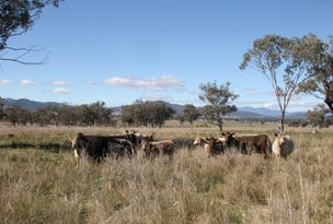 Lot 12 Werris Creek Road, Quirindi, NSW 2343