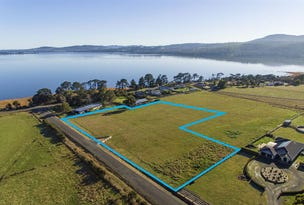 Lot 3, 530 Los Angelos Road, Swan Bay, Tas 7252