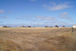 Section 171 Moorara Drive, Port Victoria, SA 5573
