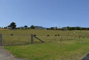 lot 1 CNR of Wood & Cowper, Tenterfield, NSW 2372