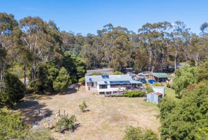 9 Old Bangor Tram Road, Mount Direction, Tas 7252