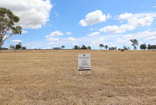 Lot 216 Hillview, Louth Park, NSW 2320