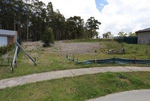 19 Coolabah Cl, Fletcher, NSW 2287