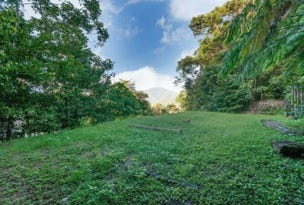 7 Planchonella Close, Edge Hill, Qld 4870