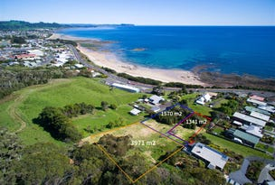 313 Bass Highway, Ocean Vista, Tas 7320