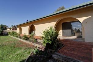 Units 7-9, 86 Nookamka Terrace, Barmera, SA 5345