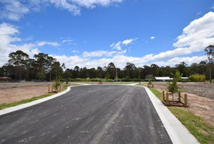 Lot 17/239 Old Southern Road, South Nowra, NSW 2541