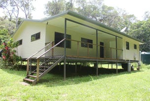 210 White Beech Rd, Daintree, Qld 4873