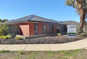 19 Irontree Close, Kangaroo Flat, Vic 3555