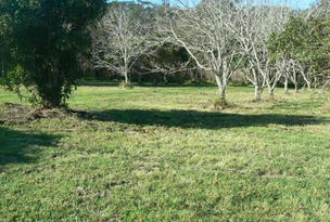 Lot 213 Keith Hall Lane, Keith Hall, NSW 2478