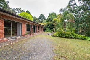 29 Old Menzies Creek Road, Menzies Creek, Vic 3159