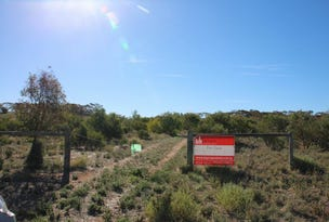 502 Woolshed Road, Mannum, SA 5238