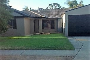 41 Norfolk Road, Marion, SA 5043