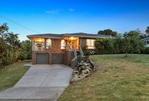 3 Buckland Court, Elliminyt, Vic 3250